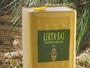 Pine Honey 27kg - Çam Balı 27kg Tenekede